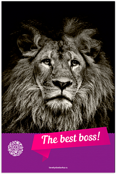 The best Boss!
