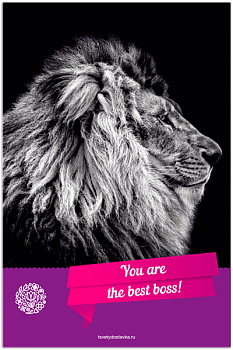 You are the best Boss!